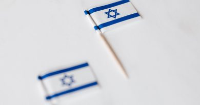 israel miniature flag on white surface